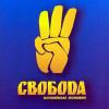 """У Нетішині ВО """"Свобода"""" провела мітинг на захист чесних виборів"""