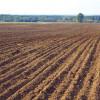 Управління АПК підштовхує аграріїв до збільшення посівних площ