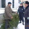 За незаконно зрубані ялинки міліціянти відкрили дві кримінальні справи