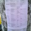 У Кам'янці-Подільському розклеїли листівки з розцінками здачі іспитів – ФОТО