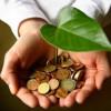 Бізнес Хмельниччини екологізується. Чи легше від того природі?