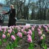 Сквер Шевченка у Хмельницькому планують завершити до 9 травня