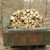 У Сімашкевича відреагували на обурення кам'янчан: до висновків екологів обіцяють припинити вирубку дерев у каньйоні