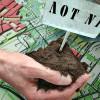 Знищення зелених насаджень через земельний аукціон у Хмельницькому