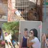У Хмельницькому може з'явитися зоопарк