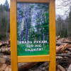 """У Національному природному парку """"Подільські Товтри"""" рубають ліси та наживаються на рекреації"""