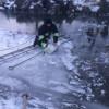 На Чемеровеччині рятувальники визволили лебедя з крижаної пастки