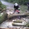 На Хмельниччині негода пошкодила 33 будинки і повалила 90 дерев
