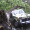 У Кам'янці-Подільському негода повикорчовувала дерева і пошкодила автомобілі