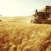 Аграрії Хмельниччини приступили до збору урожаю – намолочено понад 3 тис. т зерна