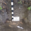 Поблизу Бакоти археологи знайшли давньоруське поховання