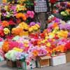 Хмельницька влада рекомендуватиме відмовитися від штучних квітів і вінків на території кладовищ (Виправлено)