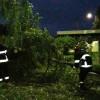 Наслідки негоди в області: 60 повалених дерев та 2 пошкоджені автівки