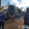 На Хмельниччині правоохоронці викрили цех із випалювання деревного вугілля без документів