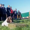У Хмельницькому готуватимуть службових собак, які шукатимуть людей, зброю, вибухівки та наркотики