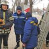 У Кам'янці-Подільському залучили пожежну машину для порятунку кота, який виліз на дерево