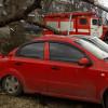 Наслідки буревію на Хмельниччині: повалені дерева і зірвані дахи