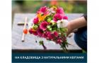 Хмельницька влада закликала містян не приносити на могили родичів штучні квіти