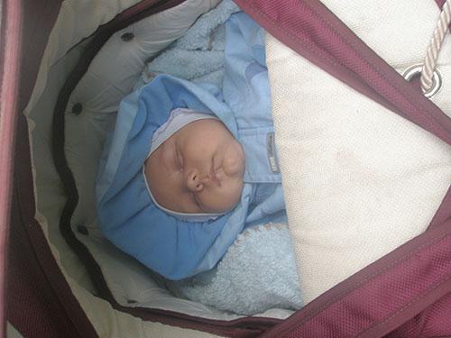 немовля-журавльових