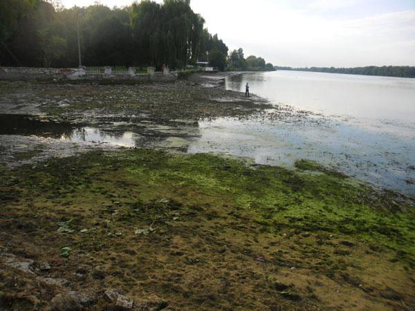 Дно Хмельницького озера вишкірилося мотлохом