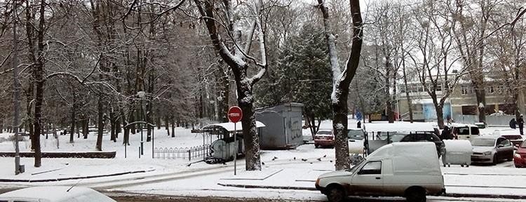 Парк ім. Тараса Шевченка. Фото НГП