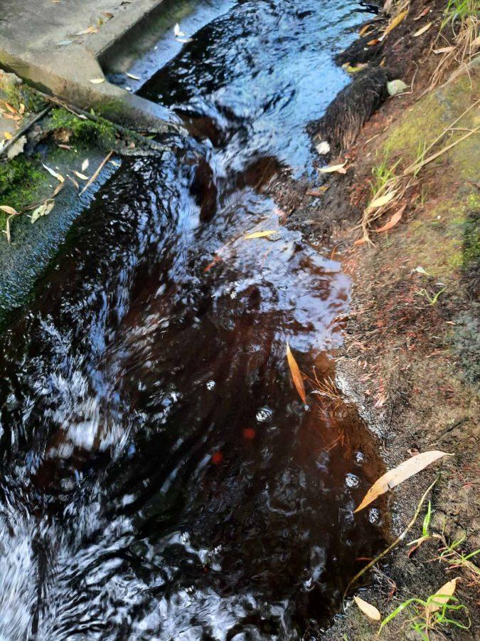 Стічні води з хмельницького сміттєзвалища надалі забруднюють водойму на Озерній